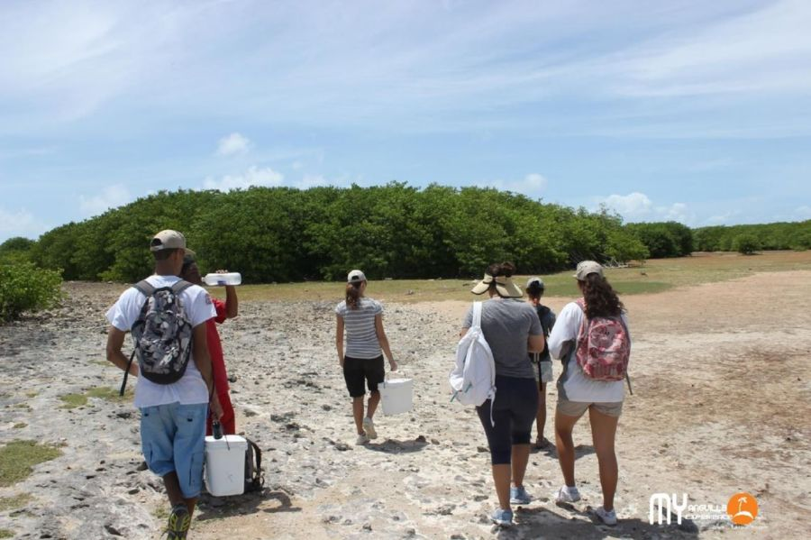 Old landing strip on Dog Island