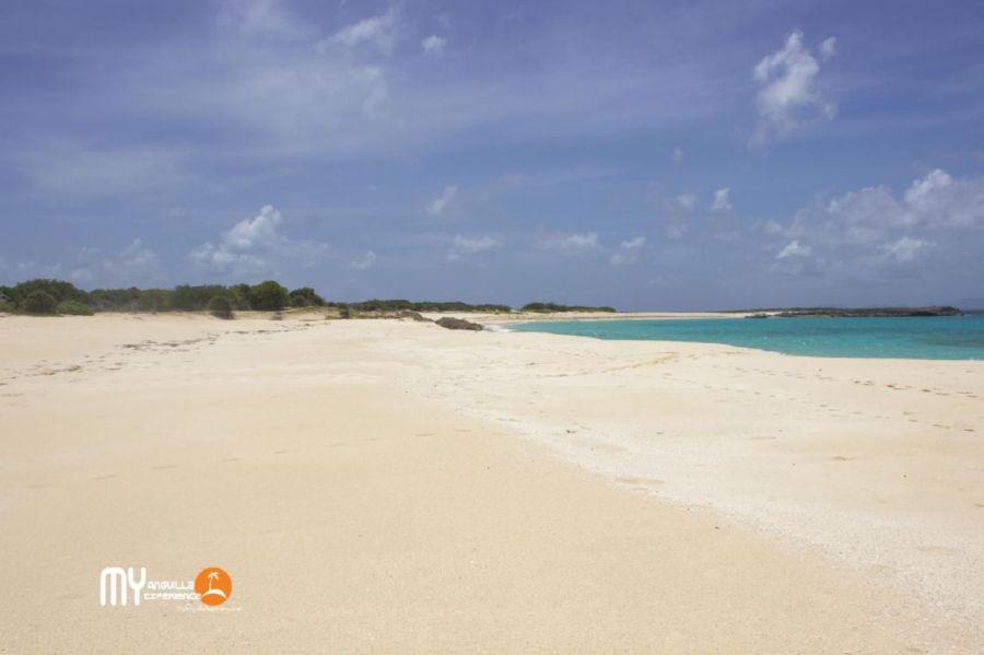 Soft sand on Dog Island