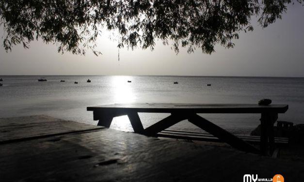 Stingray at Crocus Bay