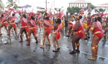 Video of Parade of Troupes 2014