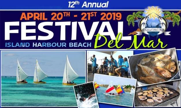 DYC Supports Kite Fest and Festival Del Mar