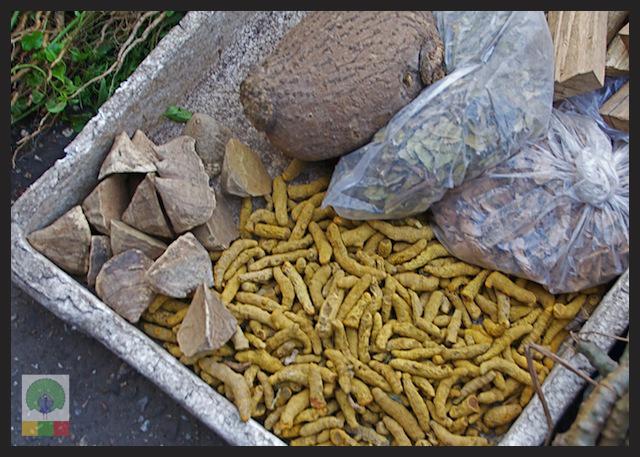 Natural Medicines Stall - Yangon - Myanmar (Burma) 5