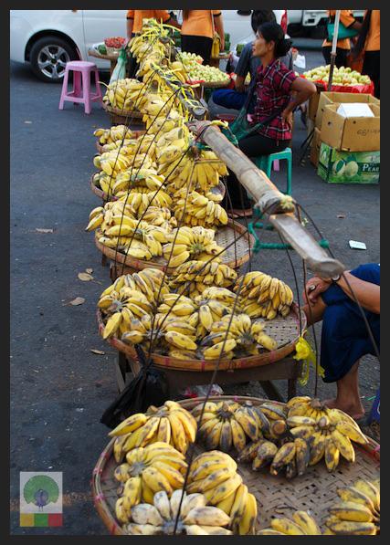 Bananas - fruit stall - Myanmar (Burma)