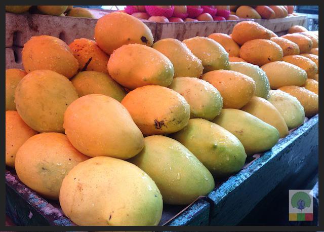 Exotic Fruit in Myanmar - Myanmar Travel Essentials