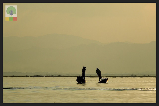 One leg paddling fisherman - Inle Lake - Myanmar (Burma) 12