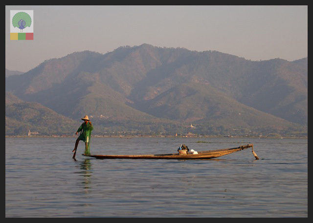 One leg paddling fisherman - Inle Lake - Myanmar (Burma) 4