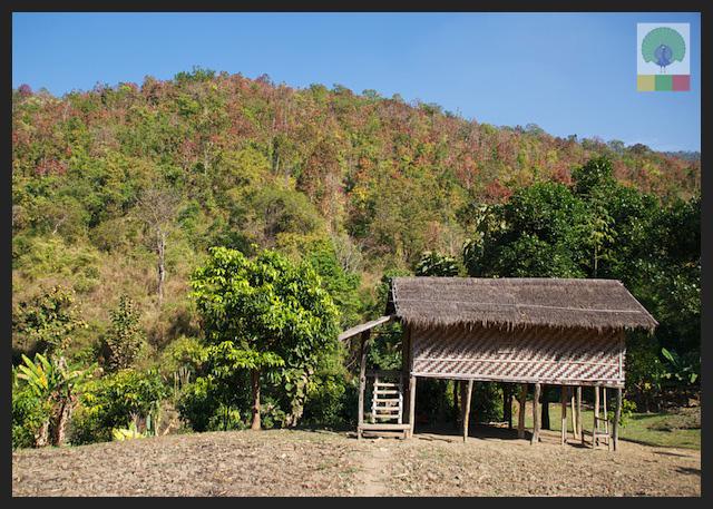 Bamboo House - Inle Lake - Myanmar (Burma)