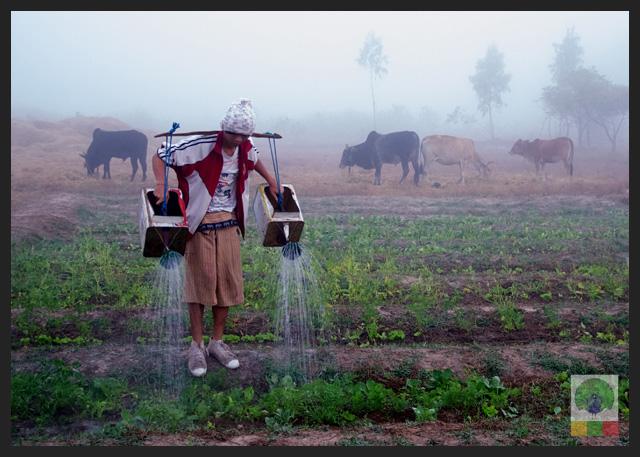 NEED Eco Village Foundation in Myanmar