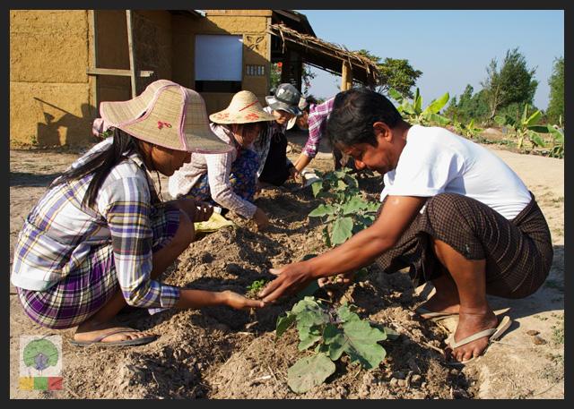 NEED Eco-village Foundation - Eco-farming school - Myanmar Travel Essentials 5