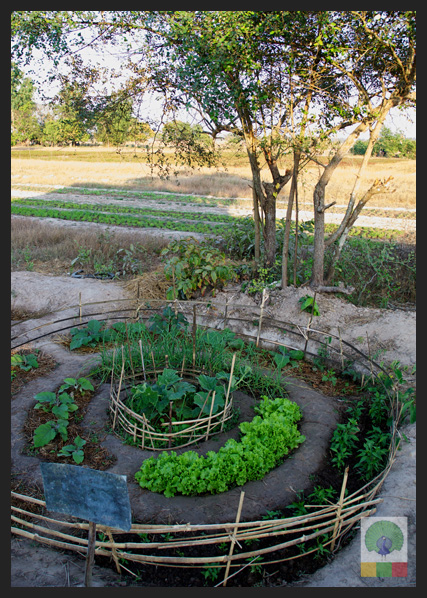 NEED Eco-village Foundation - Eco-farming school - Myanmar Travel Essentials 6