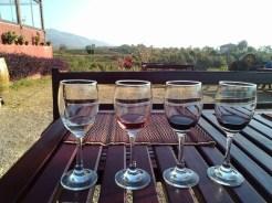 Red Mountain Estate vineyards - Inle Lake - Myanmar Travel Essentials 6