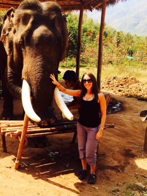 Green Valley Elephant Camp - Myanmar Travel Essentials 6