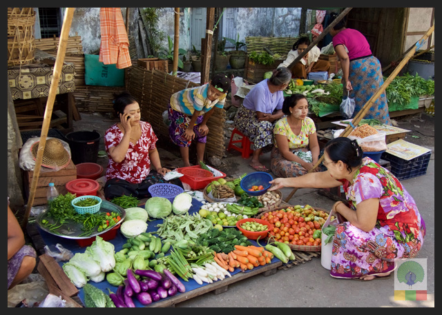 Yangon Cooking Class - Market - Myanmar Travel Essentials