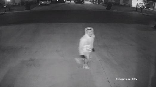 suspect 3_1524496416018.JPG.jpg
