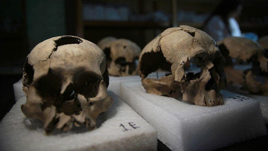 Aztec Skulls_1530150672439.jpg.jpg