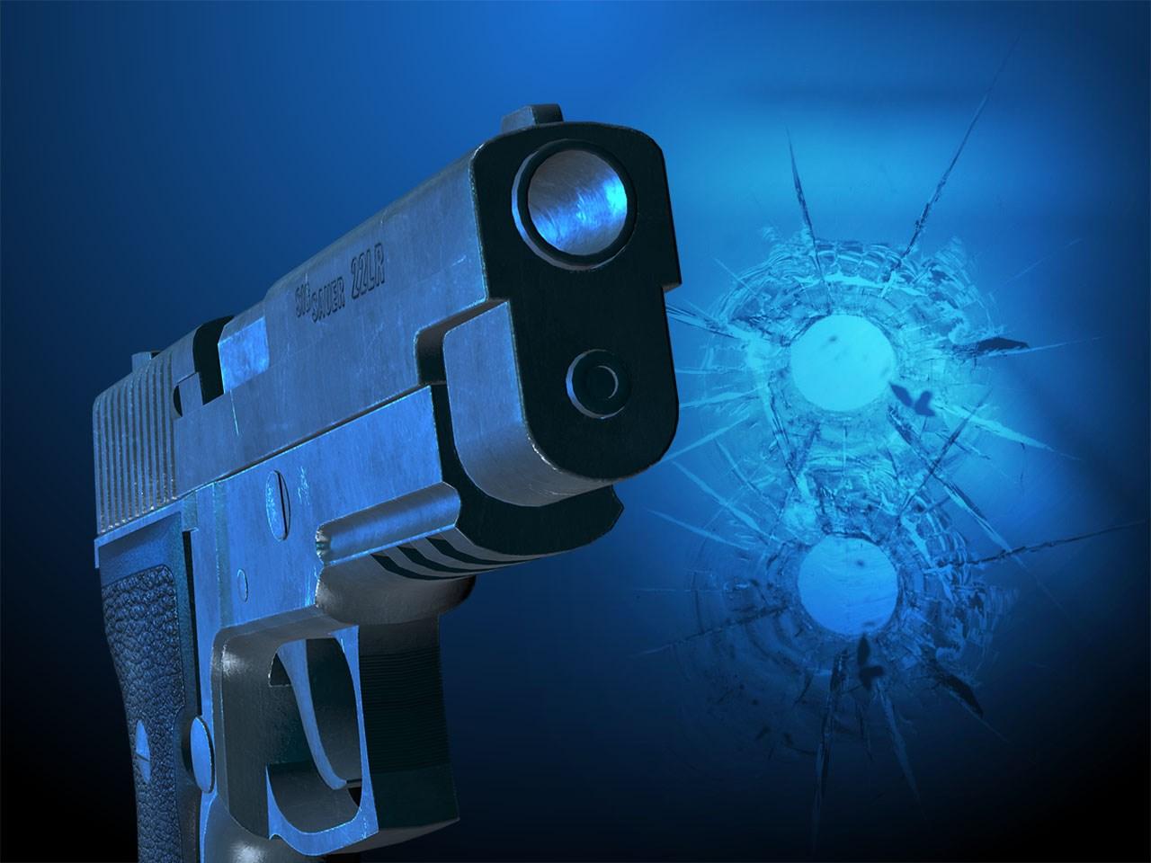 gun_1559163054487.jfif.jpg