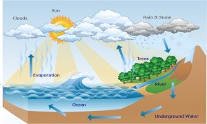 Hydrosphere Assignment Help | Atmospheric Perspiration