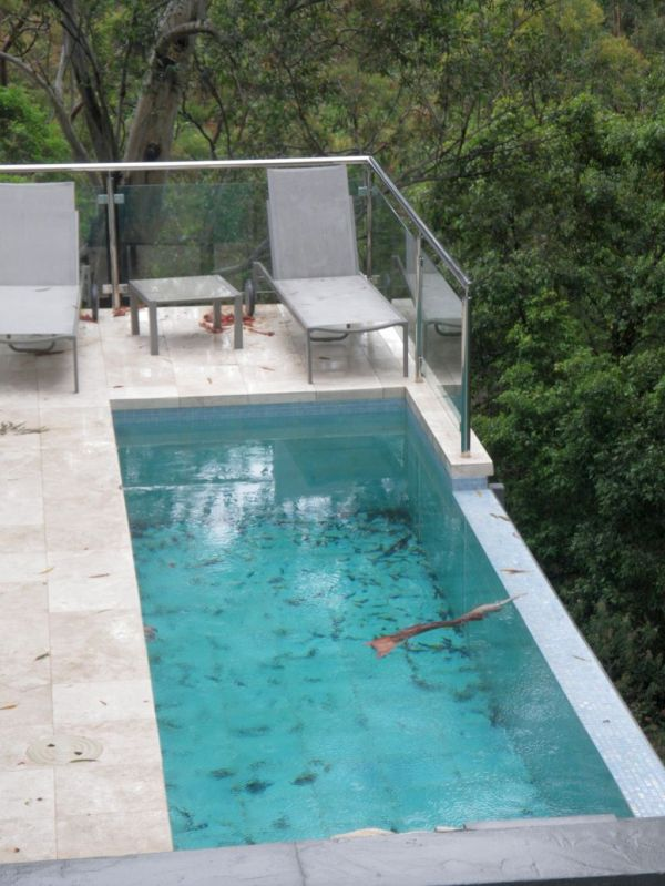 Breath- Lap Pool Design Modern Homes