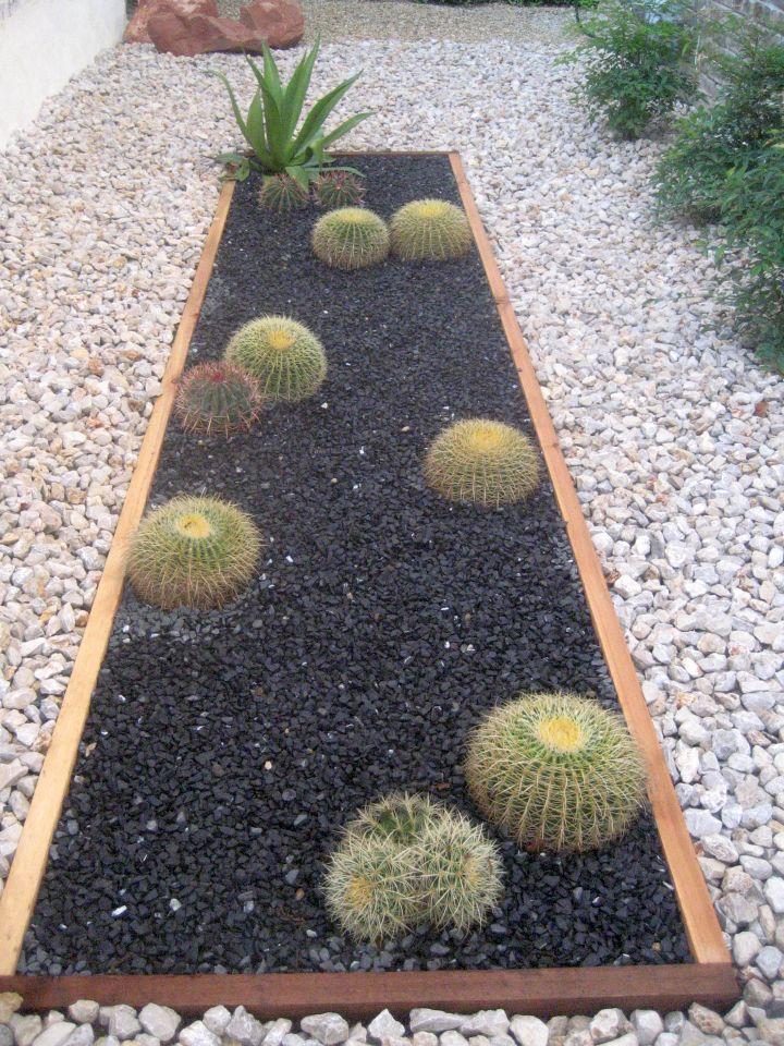 simple and easy rock garden