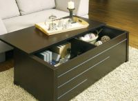 18 Elegant Trunk Coffee Table Designs