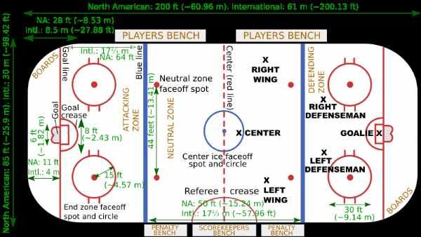 nhl hockey rink diagram printable earth layers worksheet free download