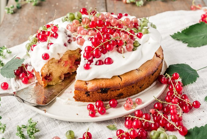 Vegan yogurt cake with red currants
