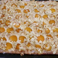 Apricot Butter Cake - Authentic German Recipe