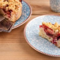German Plum Streusel Cake