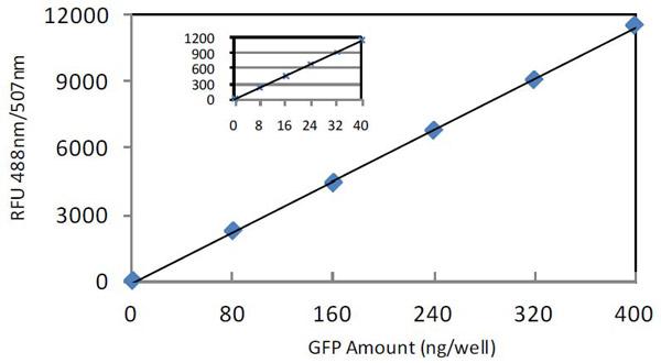 BCA Protein Quantitation Kit assay kit