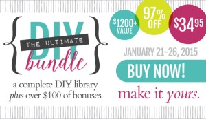 Introducing The Ultimate DIY Bundle for 2015!