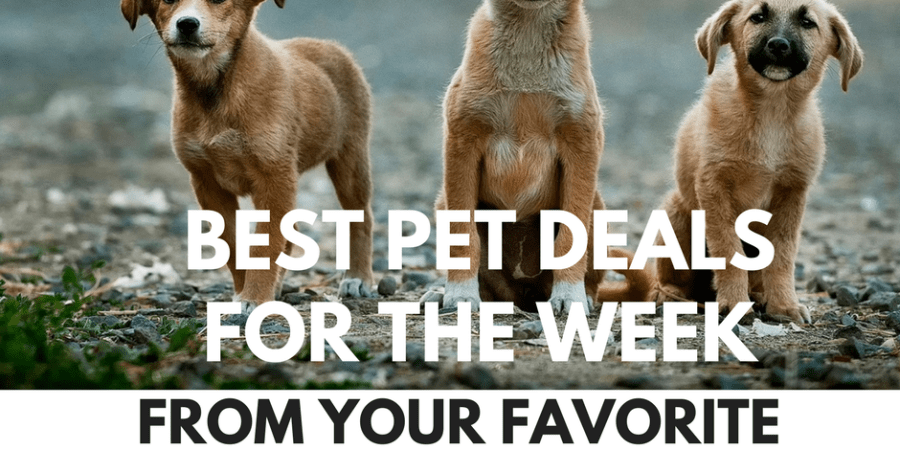 best pet deals for the current week