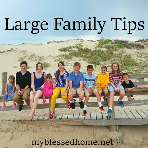 Large Family Tips