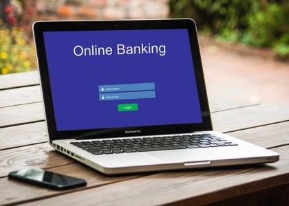 Online niche business