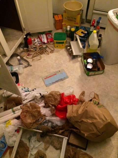 under_sink_mess