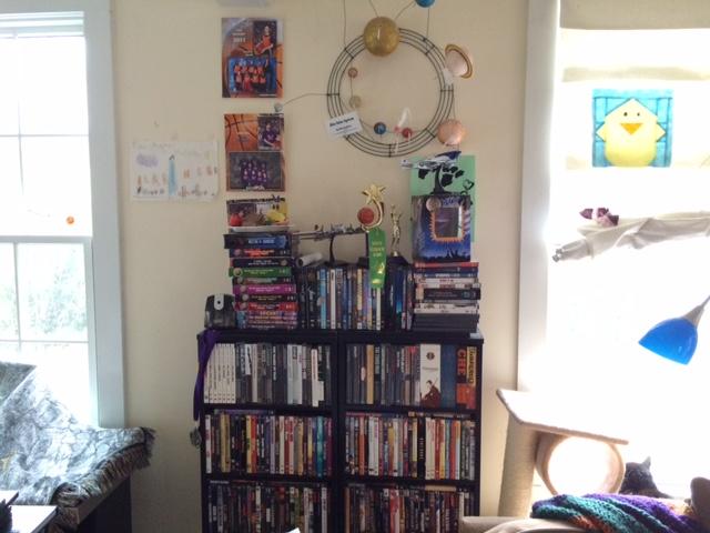dvd_bookcase