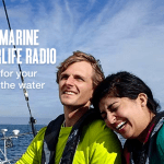 New Pandora Radio Boating Station: West Marine Waterlife Radio