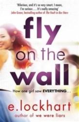 Fly On The Wall - E Lockhart
