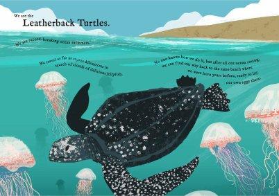 wetravelsofar-turtles