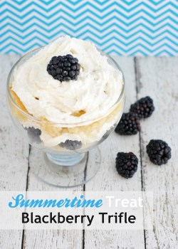 Summertime Treat Blackberry Trifle