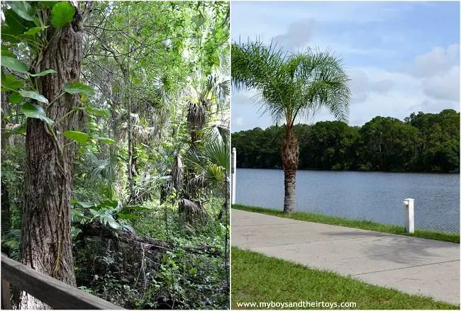 Visit Florida Sun N Fun Sarasota Resort My Boys And