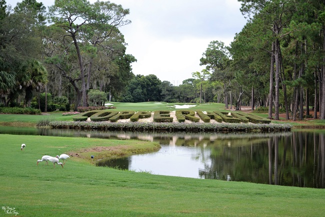 Copperhead golf course