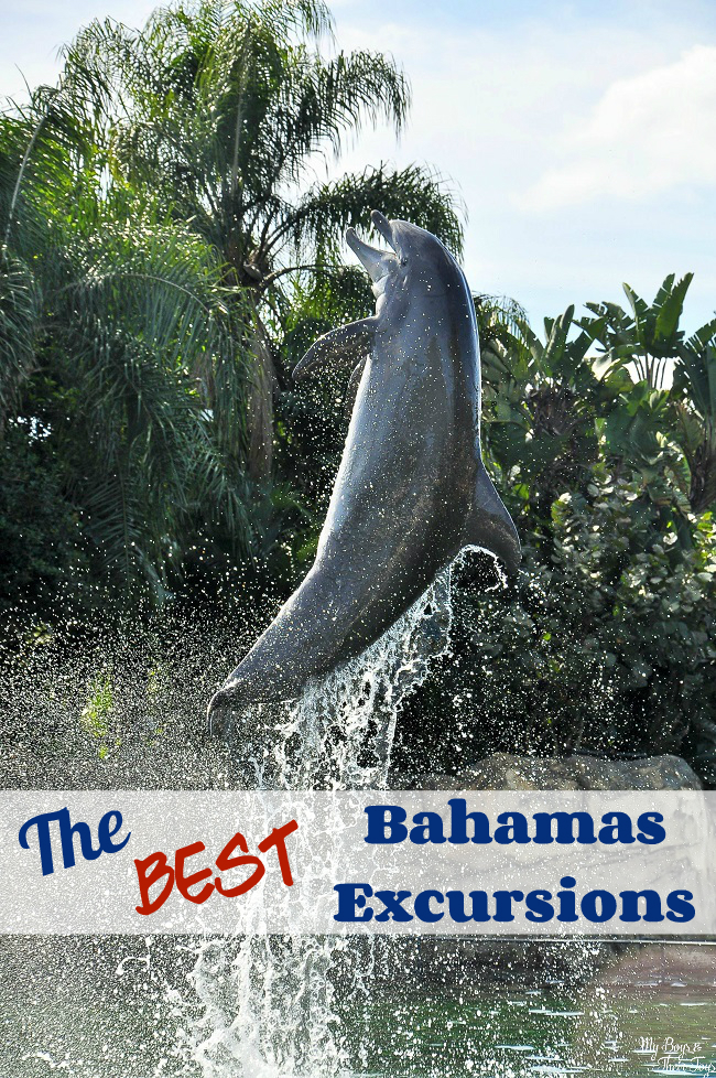 The Best Carnival Bahamas Excursions In Nassau Amp Freeport
