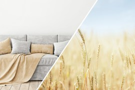 Use the Neutral Shades of Nature as Inspiration for Your Home Colors