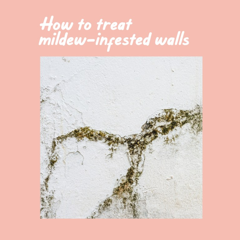 Boysen Tutorials: How to Paint Your Condo | Mildew-infested wall