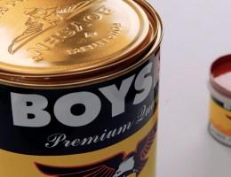 Tips on Using Boysen Colorants | MyBoysen