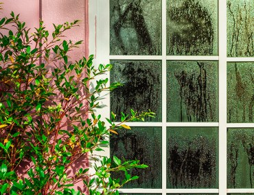Homes in High Humidity Areas: Waterproofing and Painting Guide | MyBoysen