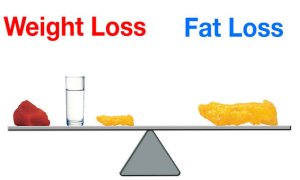 lose fat not weight