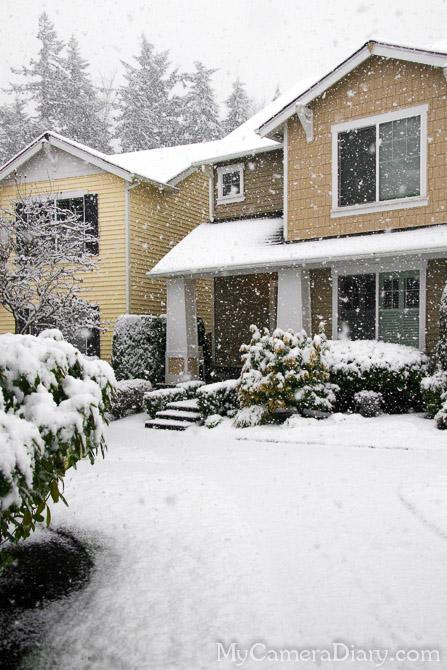 Snow In Snowqualmie