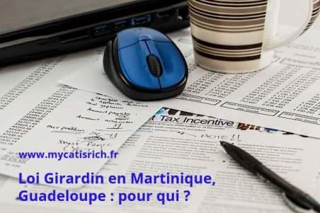 Loi Girardin Outre-mer