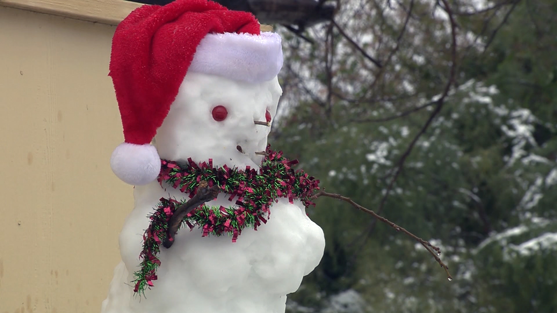 Snow in the south Carrizo Springs Texas snowman KSAT-159532.jpg36360737